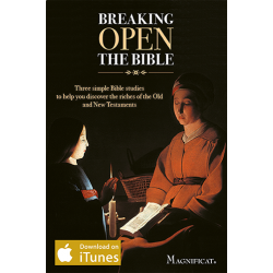 Breaking Open the Bible - Apple Books