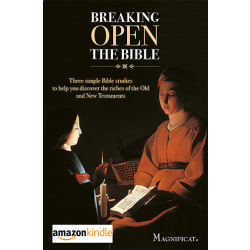 Breaking Open the Bible - Kindle