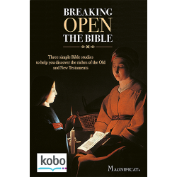 Breaking Open the Bible - Kobo