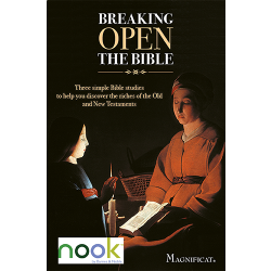 Breaking Open the Bible - Nook