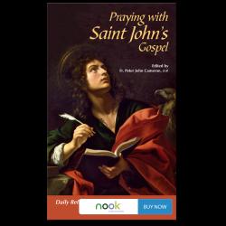 Praying with Saint John's Gospel - Nook