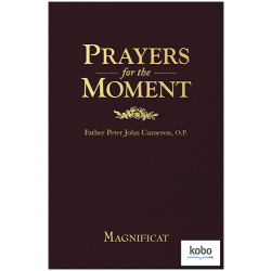 Prayers for the Moment - Kobo